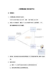 大智慧DTS程式化交易平台-整合(版本).pdf