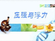 2011年最新精品课件集锦