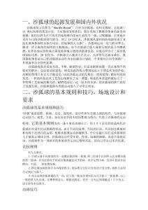 沙狐球沙壶球-北京中盛亚华..