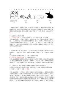 2007广东高考历史试题及答案