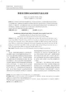草菇杂交菌株2628的鉴定与..