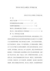 蘇州BT項目公司財務工作策劃方案(可編輯)
