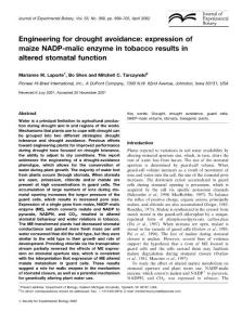 2002-Engineering for drought avoidance expression of maize NADP malic enzyme in tobacco results in altered stomatal function