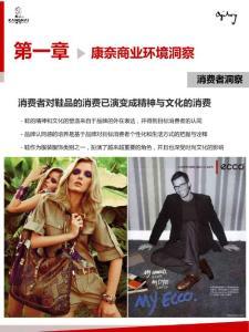 2010年康奈皮鞋品牌策划案(奥美)