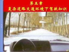 复杂道路交通环境下恶劣气象条件驾驶