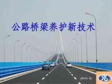 公路桥梁养护新技术【ppt】