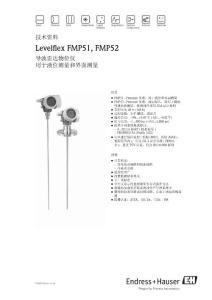 E H導波雷達FMP51資料